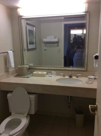 Courtyard Lyndhurst Meadowlands : very clean bathroom