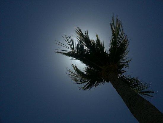 Barcelo Maya Tropical: Пляж
