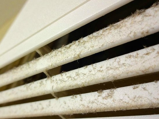 Microtel Inn & Suites by Wyndham Round Rock: Dirty bathroom vent