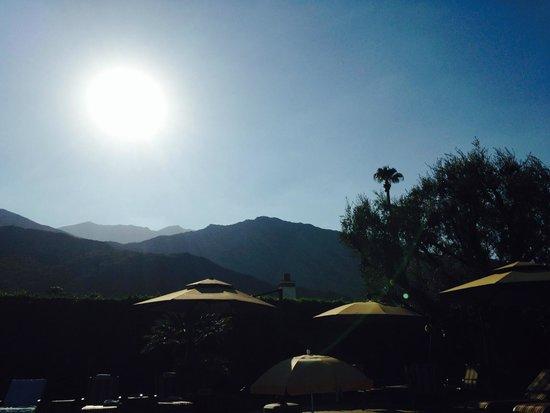 Desert Riviera Hotel: Sunshine