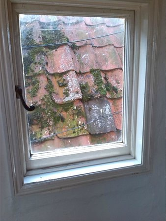 Scole Inn: Stunning landing window view - atleast clean the moss away?