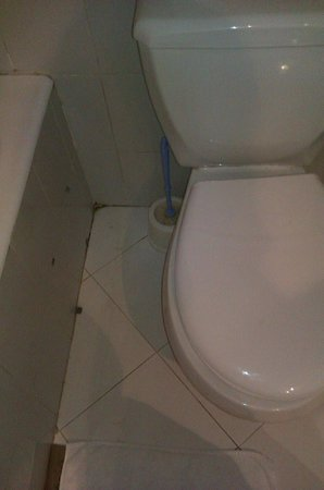 Caribbean World Borj Cedria : WC sales