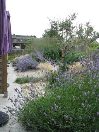 La Cremaillere : giardino