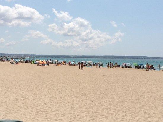 Playa de Palma: Plage de Palma