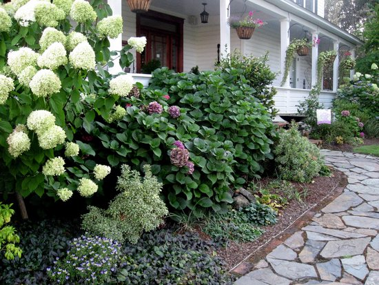 C. H. Bailey House : Walking up the front path
