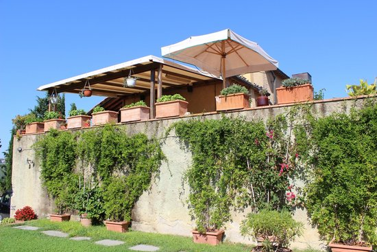 Podere Le Rondini: Grounds