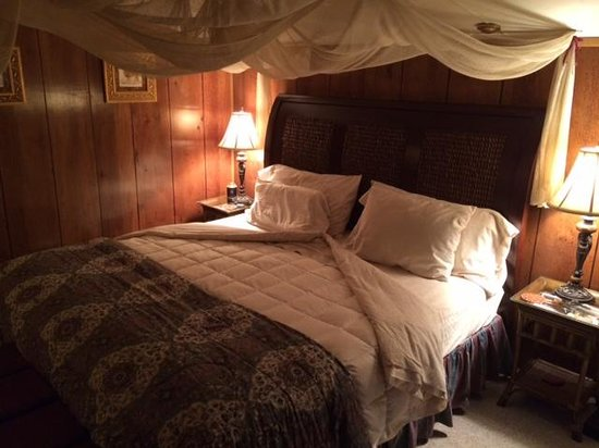 Time After Time Bed and Breakfast: Safari room