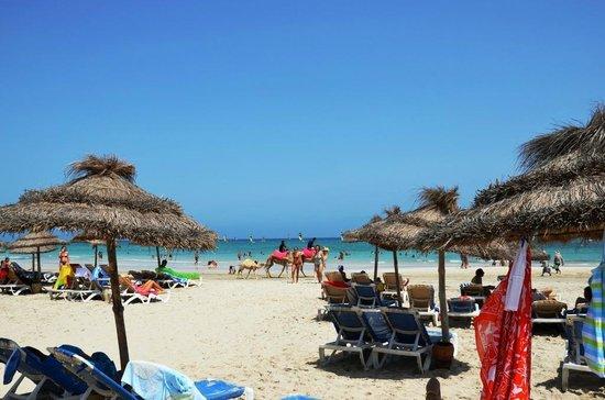 Hotel Meninx: Praia
