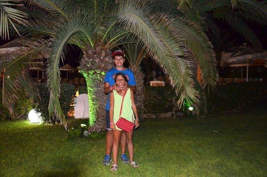 Hotel Meninx : Jardim junto á piscina
