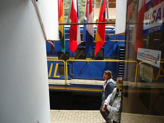 Ecopackers Machupicchu: Descendo as escadas do hostel (vista)
