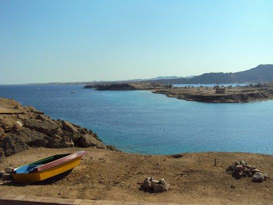 Beach Albatros Sharm : Вид с территории отеля на залив