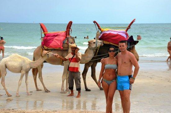 Hotel Meninx : Praia