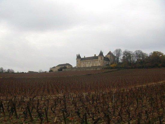 Chateau de Rully : Le chateau se situe dans les vignes