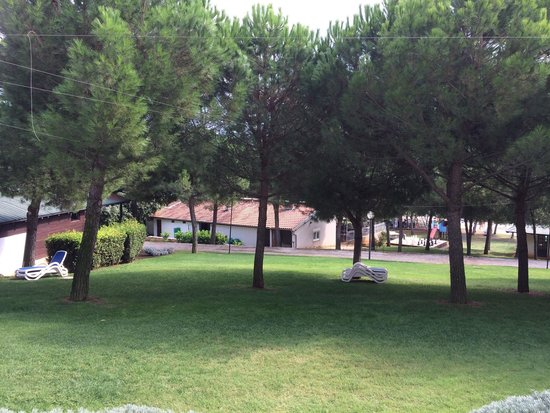 Island Hotel Istra: View from the garden suite