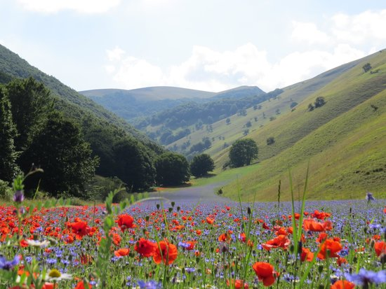 Umbria, Italia: go on a hike in the valley
