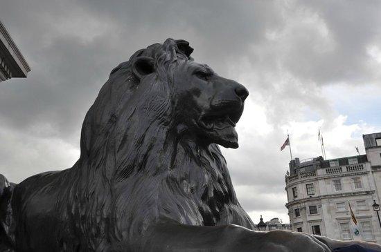 Trafalgar Square : particolare della base dell'obelisco di nelson