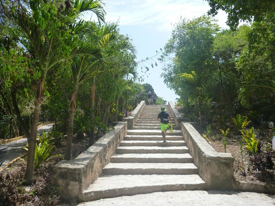 Tulum Avenue : The only stairs with a ramp at Tulum site leading to the entrance (1:3 slope in places straight