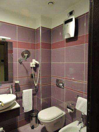 Panoramic Hotel : baño funcional y con excelente diseño