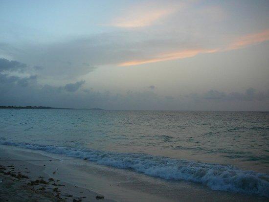 Occidental Caribe : Playa del hotel