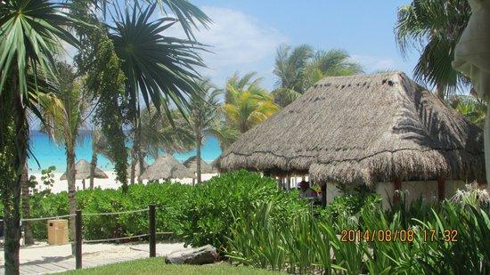 Sandos Playacar Beach Resort : desde una pérgola para masajes