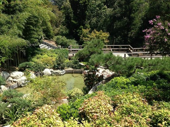 The Huntington Library, Art Collections and Botanical Gardens : More of the Japanese Garden at The Huntington