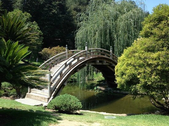 The Huntington Library, Art Collections and Botanical Gardens : Bridge over troubled waters?  The Japanese garden at The Huntington