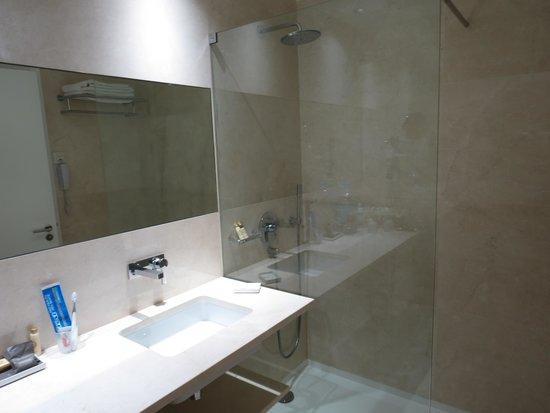 Olissippo Saldanha : Washroom