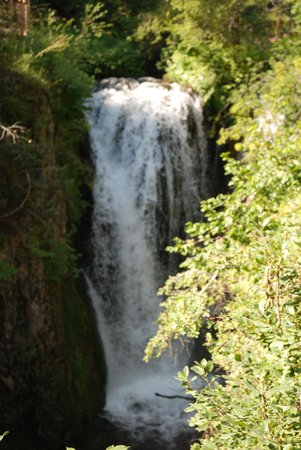 Spearfish Canyon Scenic Byway : Log-out Falls