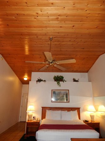 Knotty Pine Vaulted Ceiling Picture