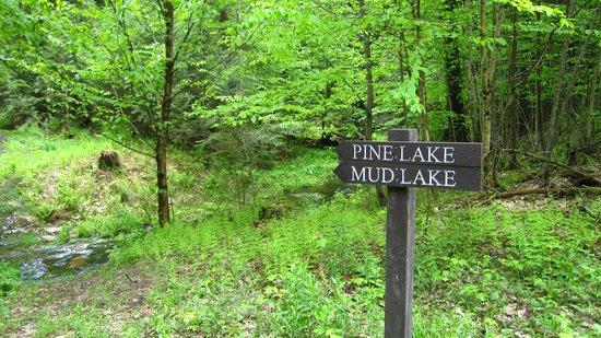 Robert V Riddell State Park: Heading to Mud Lake!