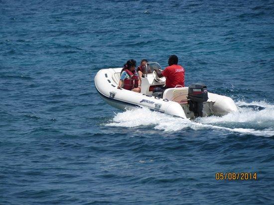 Dolphin Cove: Paseo en botes