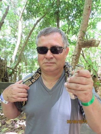 Dolphin Cove: Tambien hay una serpiente