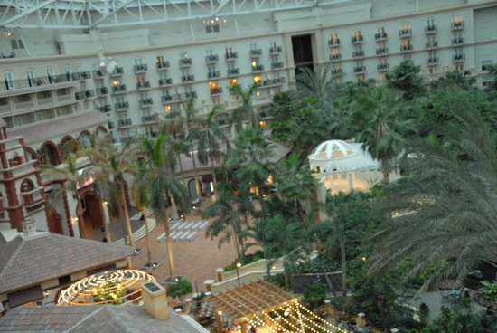Gaylord Palms Resort & Convention Center: some of the grounds