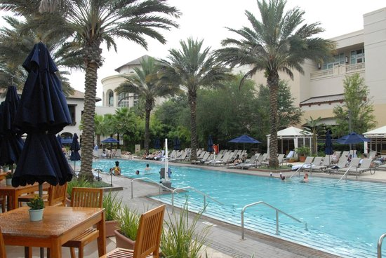 Gaylord Palms Resort & Convention Center: part of adult pool