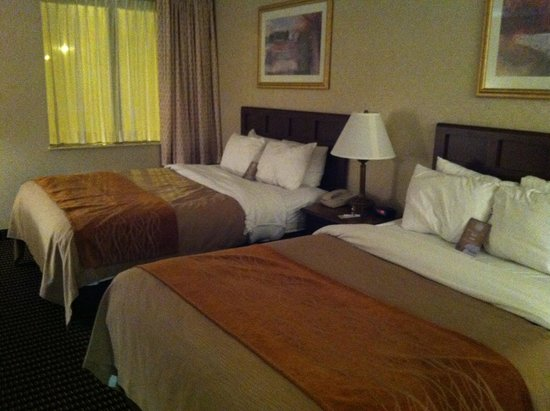 Comfort Inn Utica: Nice comfortable beds with lots of pillows