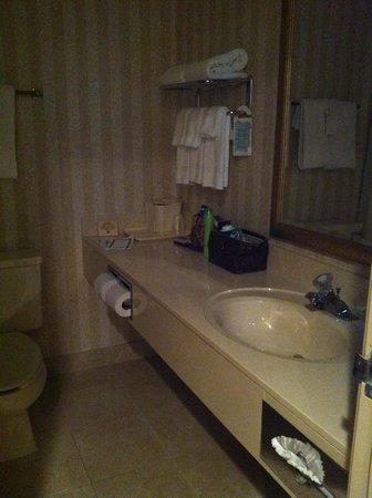 كومفرت إن يوتيكا: Bath, plenty of counter space