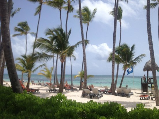 Barcelo Bavaro Beach - Adults Only : la hermosa playa