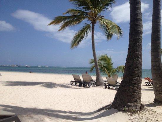 Barcelo Bavaro Beach - Adults Only: mis zonas favoritas: la playa