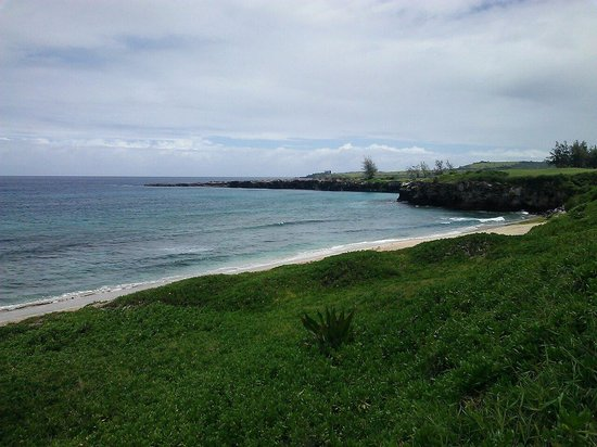 Oneloa Bay Kapalua 2018 All You Need To Know Before Go With Photos Tripadvisor