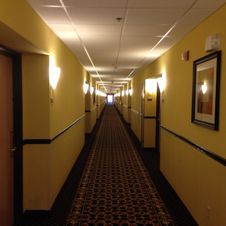 Best Western Plus Kansas City Airport-Kci East: Hallway