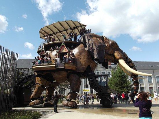 Les Machines de L'ile : l'elefante meccanico a spasso