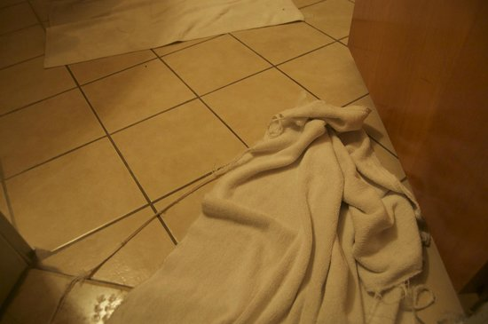 Golden Park Hotel: Towel with holes in it...