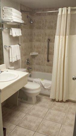 International Plaza Hotel Toronto Airport : Bathroom