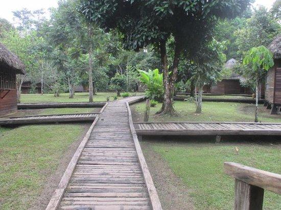 Sani Lodge: Walkway to cabins