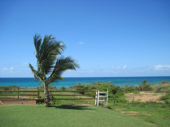 Hector's by the Sea: View from outside the room