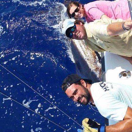 High Noon Sport Fishing: 520 pound blue marlin
