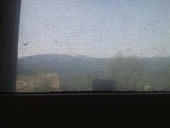 Prestige Inn Golden: The view of the mountains through a dirty window