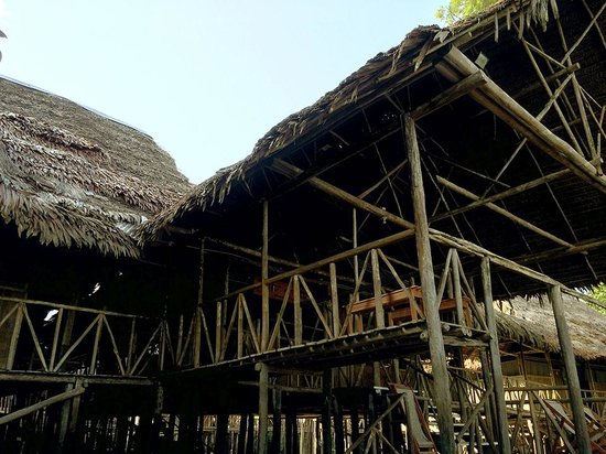 Amazonia Expeditions' Tahuayo Lodge: Main lodge