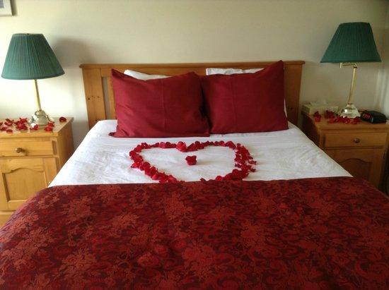 Algonquin Lakeside Inn : My anniversary