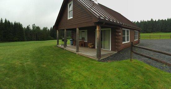 Sky Lodge Cabins: Cedars cabin